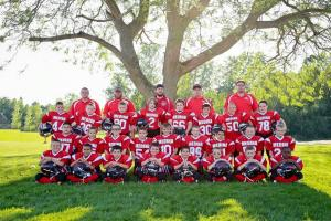 Colts 2015 team